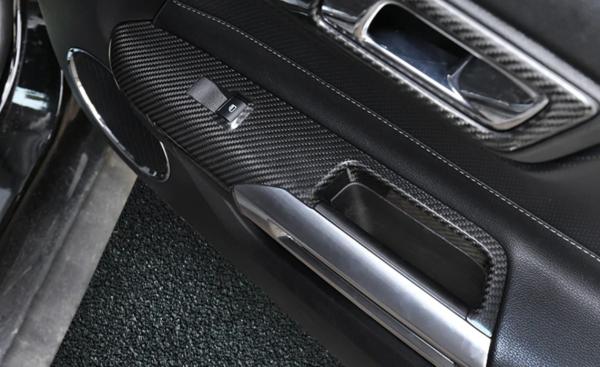 Mustang Carbon Türabdeckung